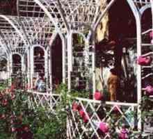 Ontwerp van `n tuintreksel
