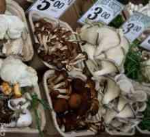 Geskenke vir tuiniers: drie pretkeuses uit jessica