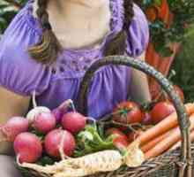 Hoe gereeld moet jy `n groentetuin toets?
